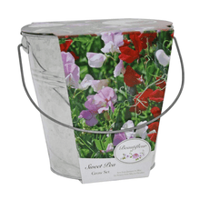 Load image into Gallery viewer, Sweet Pea Beautifleur Pail Garden Planter