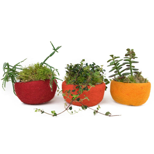 3 Filzschalen 10cm rot orange gelb - 8-Natur