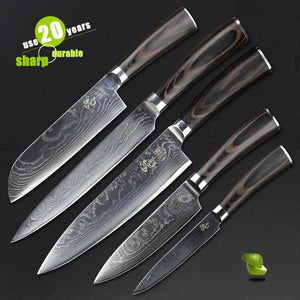 HAOYE 5 piece damascus kitchen knives set