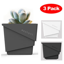 Meshpot 3-Pack Succulents Plastic Flower Pot Planter - Paruse