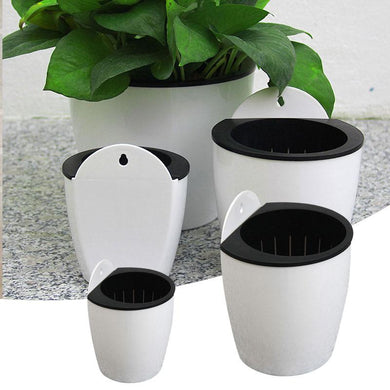 Self-Watering Flower Pot. - Paruse