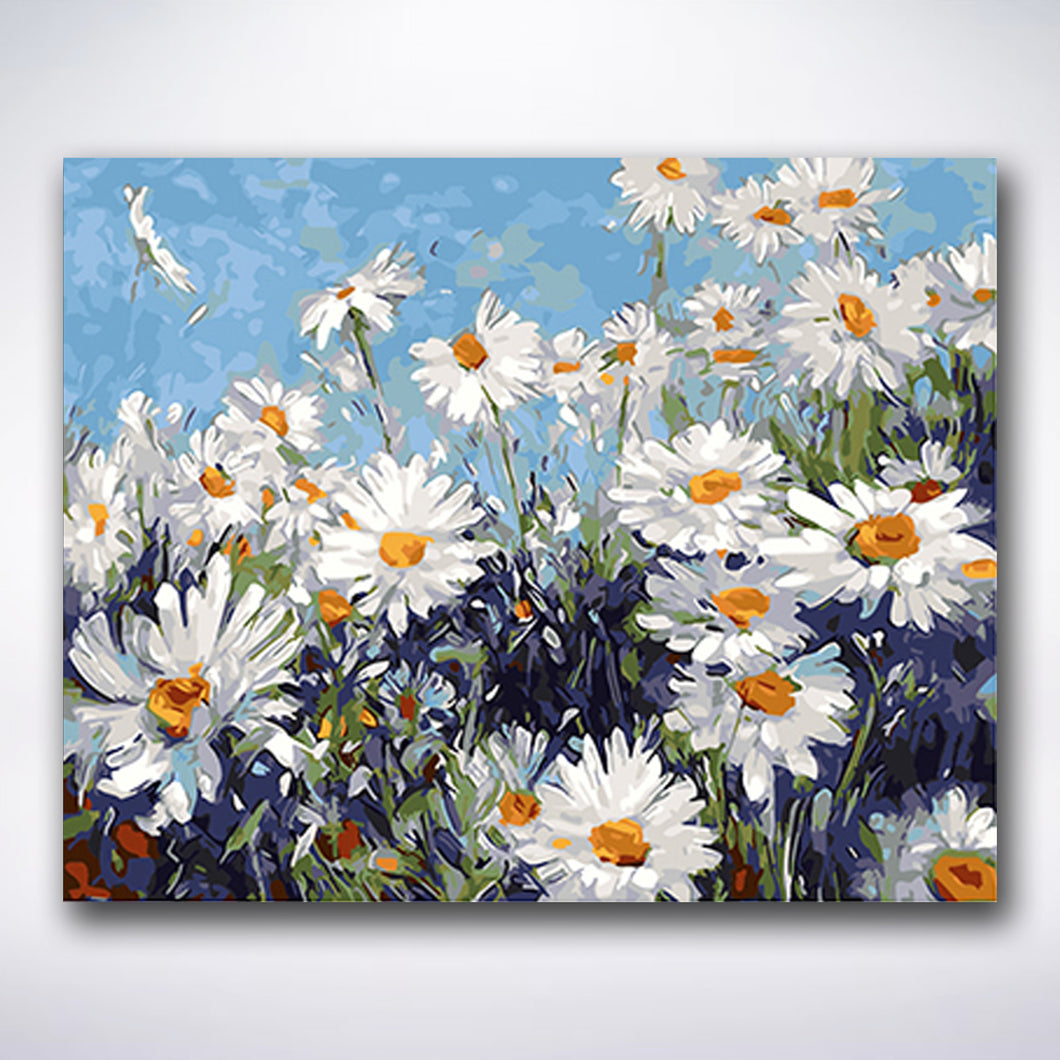 Daisies In A Field - Paint by number