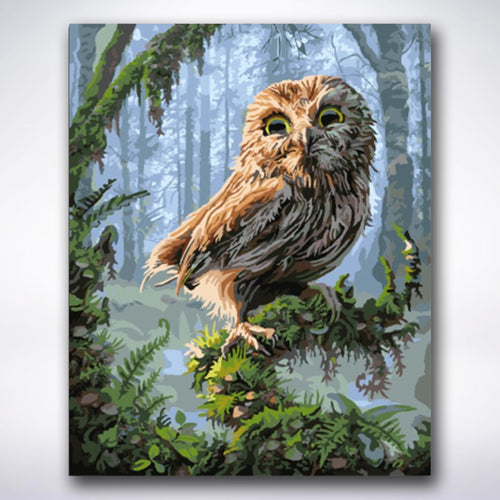 Mysterious Owl - Paint by number