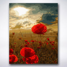 Load image into Gallery viewer, Sunset Poppies - Paint by number