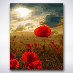 Sunset Poppies - Paint by number