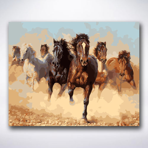 Wild Horses - Paint by number