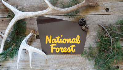 custom national forest sign with a brown background and yellow text that says 'national forest' with pine needles and antlers around the sign
