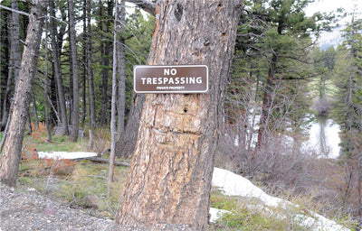 metal sign with white text saying 'no trespassing private property' with a brown background hung up on a tree in the distance