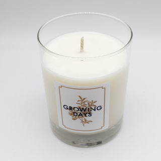 Grapefruit Mint Candle 10oz