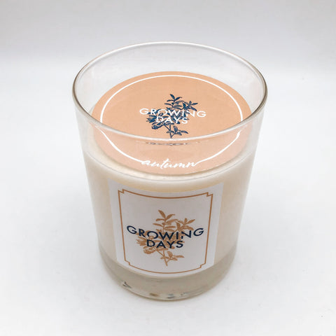 Autumn Candle 10oz