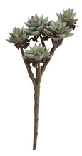 Faux Succulent Branch - Growing Days by Tamara Day