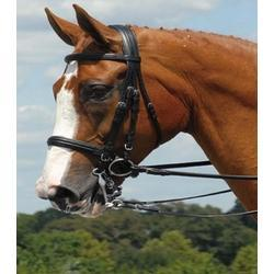Aramas Double Raised Dressage Bridle With Reins