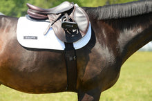 Load image into Gallery viewer, Equifit Essential Girth W/ SheepsWool Liner