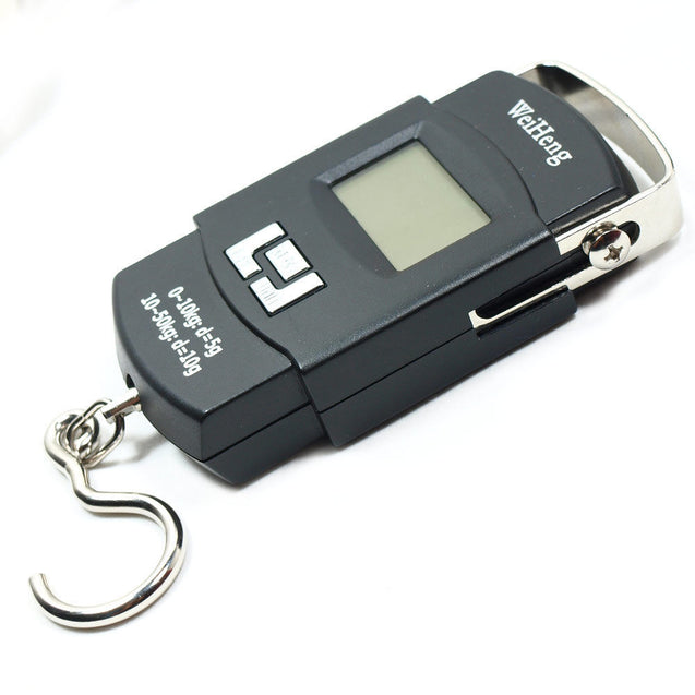 110lbs  5g-10g Dual Accuracy Portable Digital Hanging Scale Fishing / Luggage - Anyvolume.com
