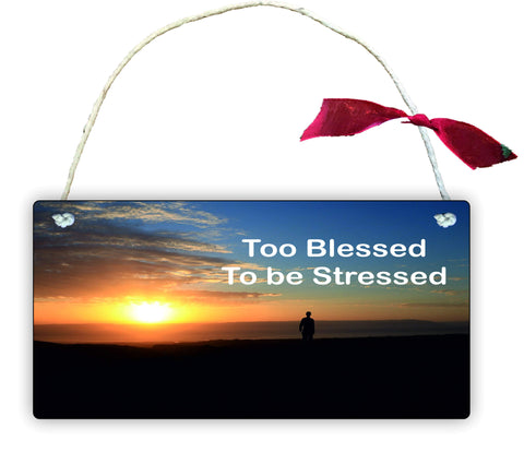 GP68 Gift Hanging Wall Door Sign Plaque Decoration Too Blessed To Be Stressed