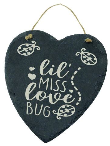 Large Engraved Slate Hanging Heart Valentines Gift lil Miss Love Bug Ladybird