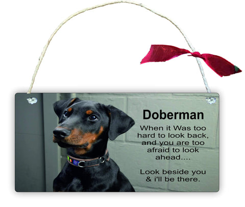 GP32 Doberman Gift Hanging Wall Door Sign Plaque Decoration To Afraid to Look Ahead