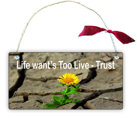 GP69 Gift Hanging Wall Door Sign Plaque Decoration life wants to live - trust