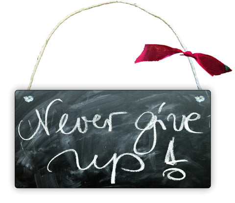 GP77 Gift Hanging Wall Door Sign Plaque Decoration NEVER GIVE UP Positive Quote