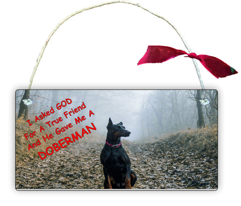 Gift Hanging Wall Door Sign Plaque Decoration I Asked GOD DOBERMAN GP10