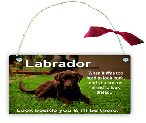 GP56 Wooden Gift Hanging Wall Door Sign Plaque Decoration Brown Labrador When it was too Hard