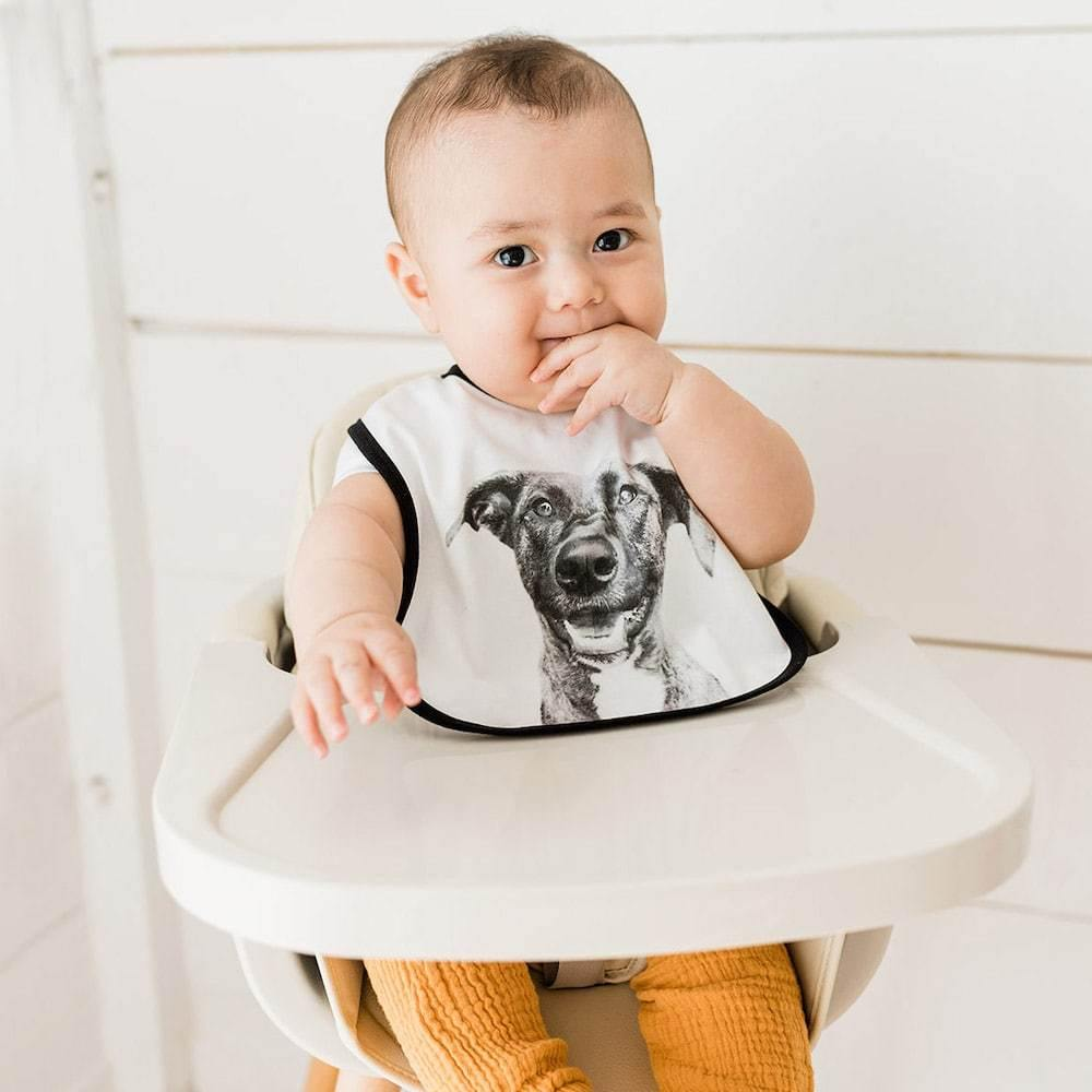 Baby Bibs (Add-on Item) - Perkie Prints