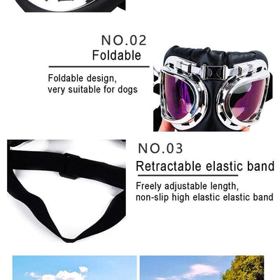 CSG Dog Sunglasses  -  Cheap Surf Gear