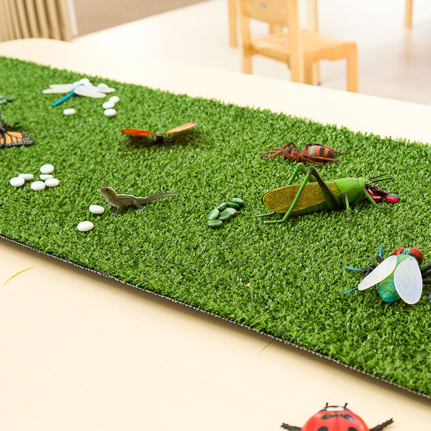 Fake bugs on fake grass at Spotted Frog Preschool