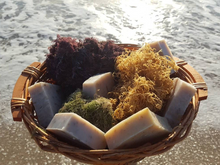 Super Sea Moss Soap with Purple Sea Moss, Gold Sea Moss and Spirulina - Yaga Lifestyle
