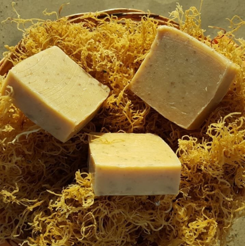 Gold Sea Moss Soap (Handmade, Vegan) With Wildcrafted Jamaican Gold Sea Moss - Yaga Lifestyle