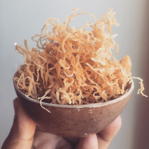 Jamaican Gold Irish Sea Moss (Raw, Wildcrafted) - Yaga Lifestyle
