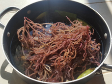 Jamaican Thick Purple Gold Irish Sea Moss (Raw, Wildcrafted) - Yaga Lifestyle