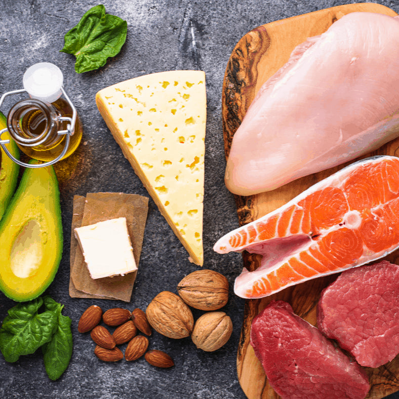 weight loss program food research