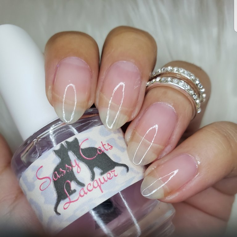 Purrfect shine QDTC top coat