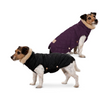 ESKADRON GLOSSY DOG COAT