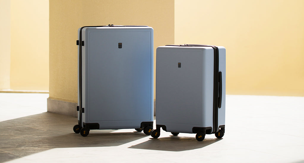 carry on luggage & check-in luggage