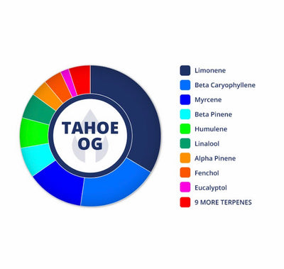 5 Pack Tahoe OG Terpene Infused Tincture