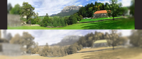 two landscapes in panoramic view for comparative human and cat vision