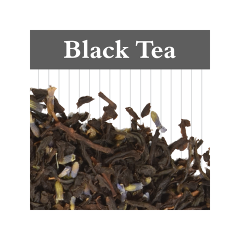 The Book & The Bean Teas featuring White Lion Tea Company~ SEVERAL VARIETIES