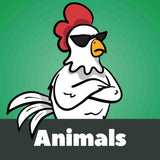 Animals Graphics
