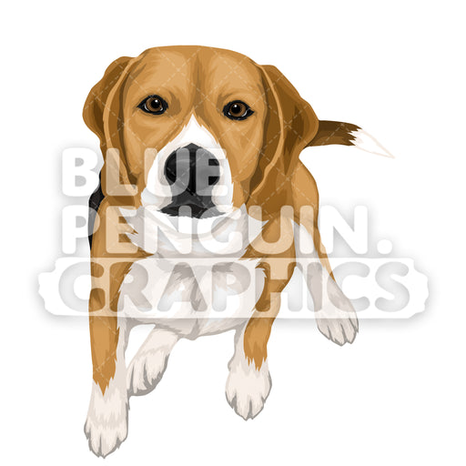 Beagle Dog version 5 Vector Cartoon Clipart Illustration - Blue Penguin Graphics