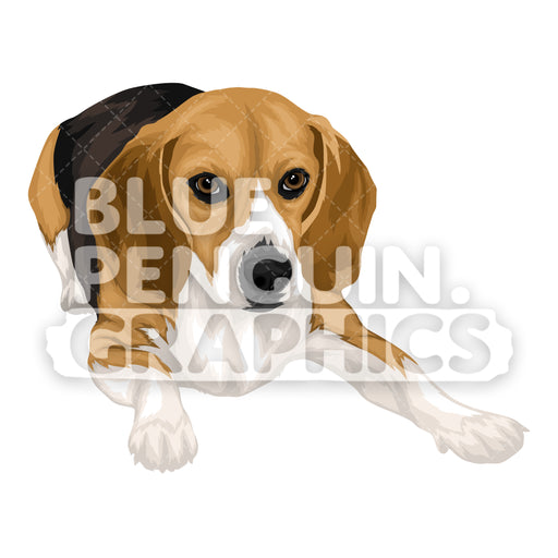 Beagle Dog version 7 Vector Cartoon Clipart Illustration - Blue Penguin Graphics