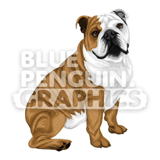 Bulldog version 4 Vector Cartoon Clipart Illustration - Blue Penguin Graphics