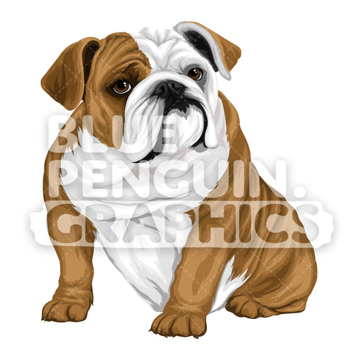 Bulldog version 8 Vector Cartoon Clipart Illustration - Blue Penguin Graphics