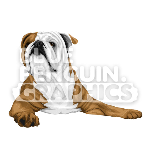 Bulldog version 9 Vector Cartoon Clipart Illustration - Blue Penguin Graphics