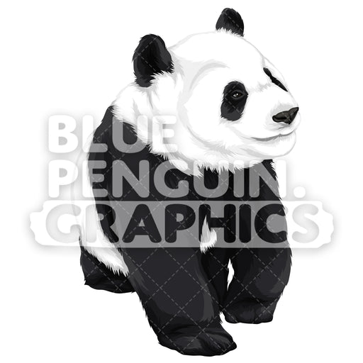 Cute Panda Version 2 Vector Clipart Illustration - Blue Penguin Graphics