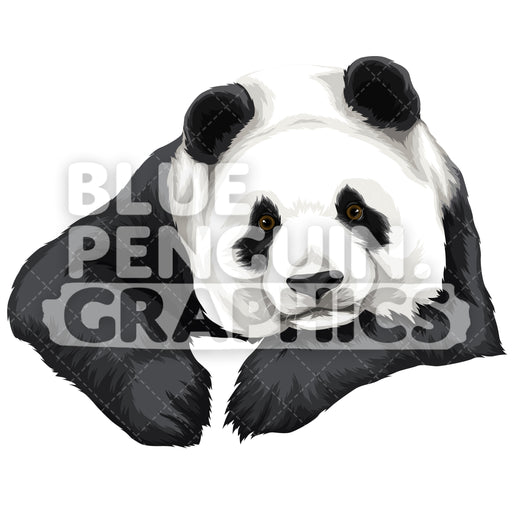 Cute Panda Version 3 Vector Clipart Illustration - Blue Penguin Graphics
