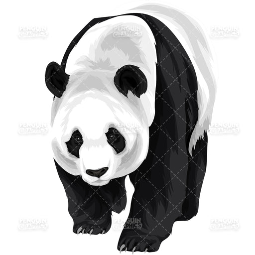 Cute Panda Version 5 Vector Clipart Illustration - Blue Penguin Graphics