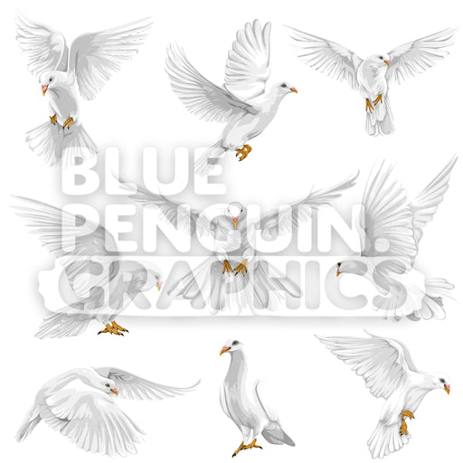Realistic Dove Bundle Set Vector Clipart - Blue Penguin Graphics