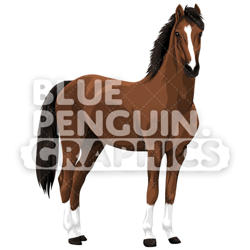 Realistic Horse Version 3 Vector Clipart Illustration - Blue Penguin Graphics